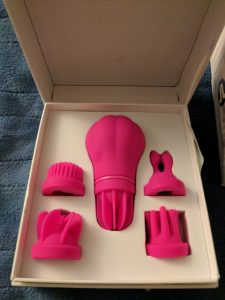 Inside the Caress box, showing the toy and all five attachment heads